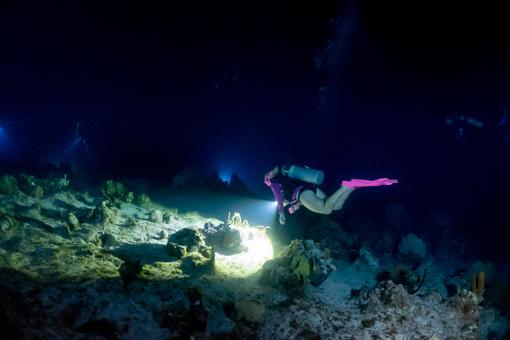 Divetech's owner, Joanna Mikutowicz, exploring the mini wall on a night dive.