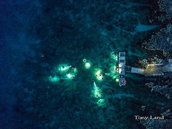 Night divers off Lighthouse Point DIve Resort.