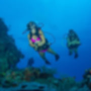 a pair of scuba divers on the main wall in Grand Cayman