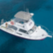 An arial shot of Divetech's pink 36-Netwon Dive Boat