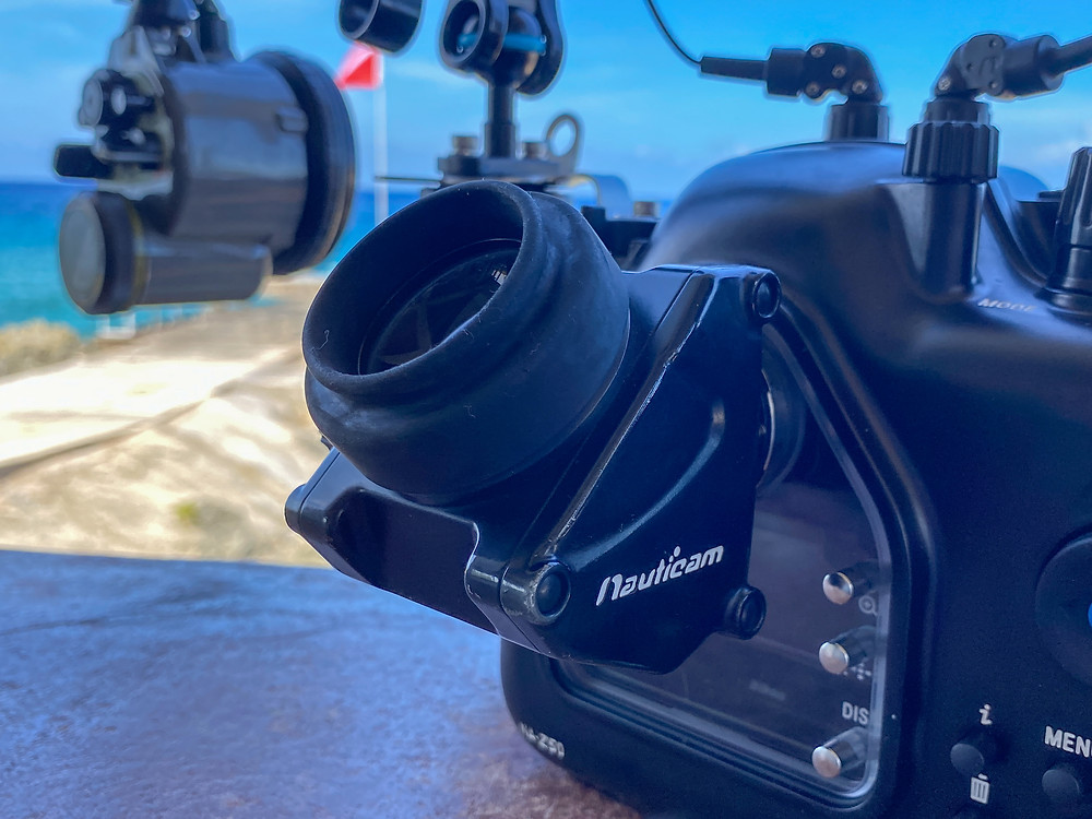 Nauticam NA-Z50 housing with 45 degree viewfinder.