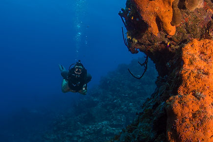 An advanced open water diver on the dive site Orange Canyon off Grand Cayman