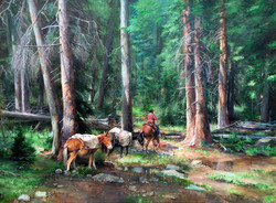Deer Creek Trail Wyoming