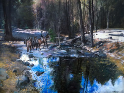 Grass Valley CA Crossing the Creek2