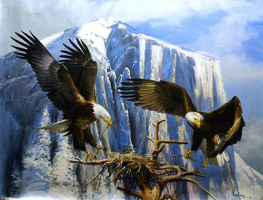 14eagle-family-build-nest-76cm-117cm-oil