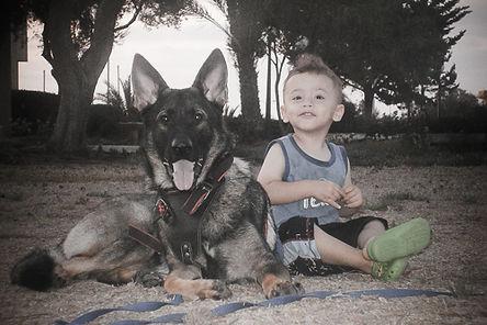 ילד עם רועה גרמני