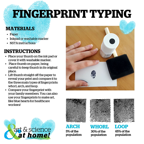 FINGERPRINT TYPING .png