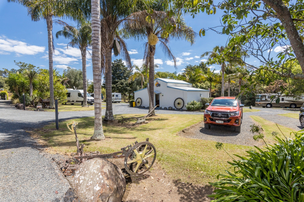 Palm Trees and Motorhome Site