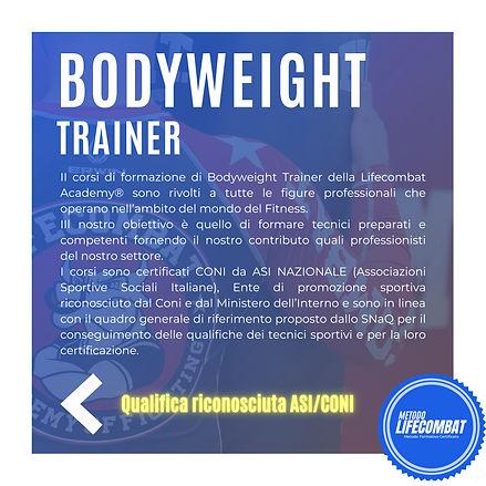 bodyweight trainer.jpg