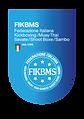 FIKBMS_Elemento-grafico-identificativo.p