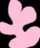 SUCCULENT_pink.png