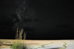 Milky Way over the Beach