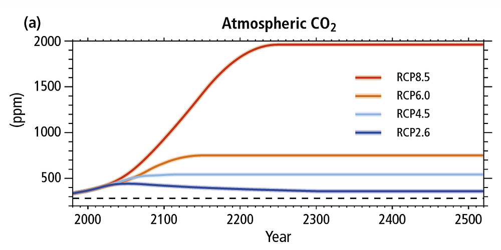 this graph shows 4 potential RCPs for atmospheric CO2. RCP8.5 is the worst case scenario and shows about 2000 ppm by the year 2200. RCP2.6 is the best case scenario, with CO2 levels peaking around 2050 just under 500 ppm, then slowly sinking over hundreds of years to below 400 ppm.