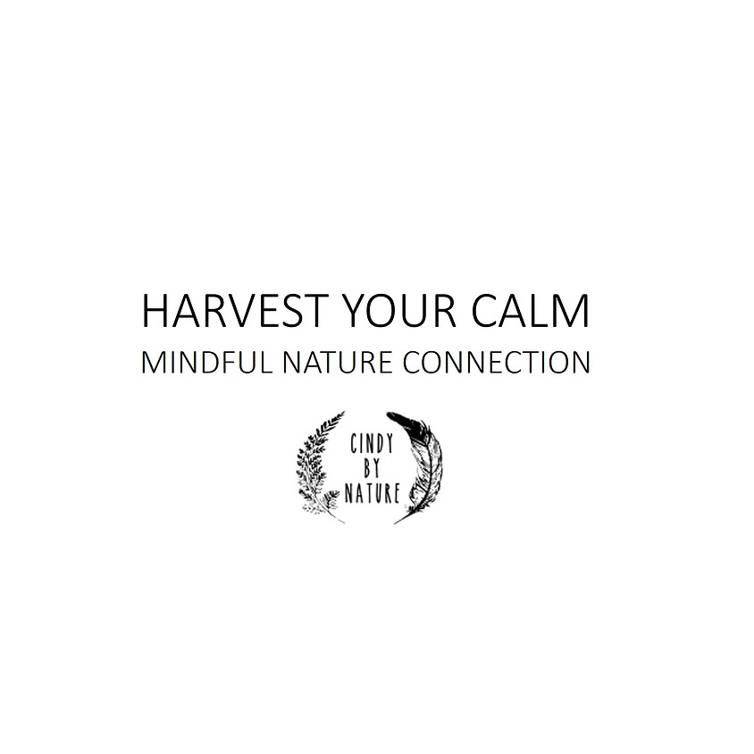 Harvest Your Calm – Mindful Nature Connection
