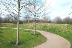 Outdoor Grounds