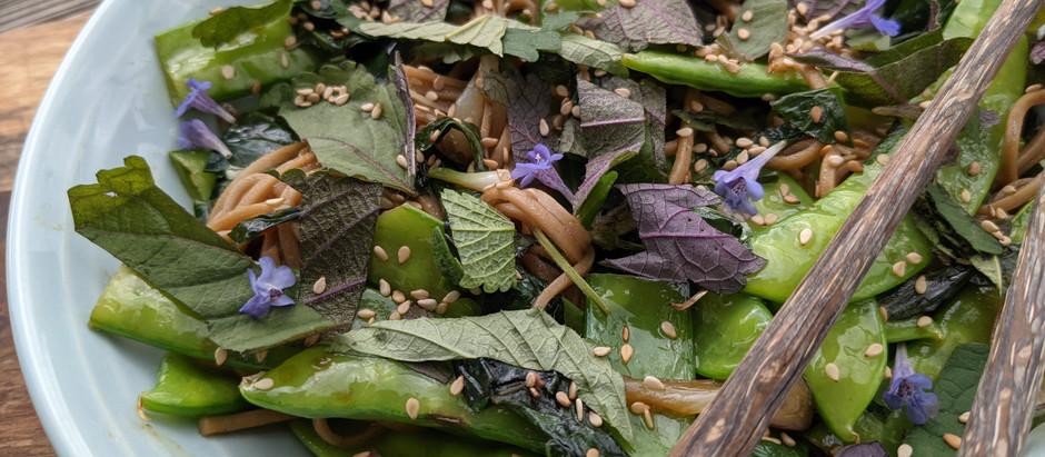 Soba nudle s hráškem a asijskými bylinkami