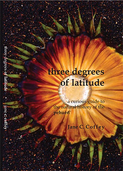 Three Degrees of Latitude, Pehuén, Araucaria araucana, Monkey puzzle tree, Jane Coffey,