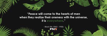 FNX Jungle Banner