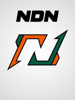 NDN Logo