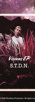 S.T.D.N. - Visions EP