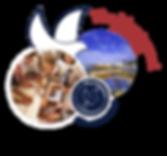 Logo-November.png
