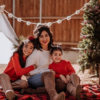 Alisha Family Christmas Mini