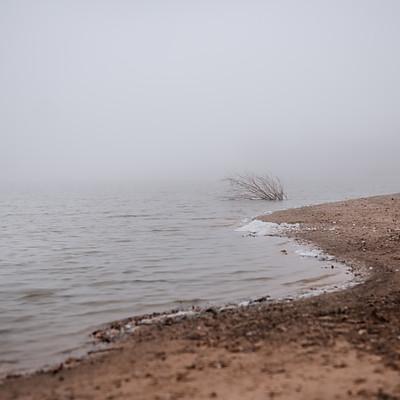 Fog Session