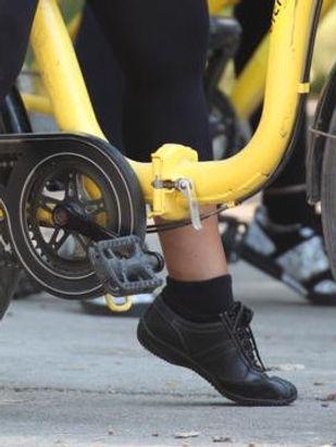 Rutes amb bicicleta - Parc Agrari Delta Llobregat