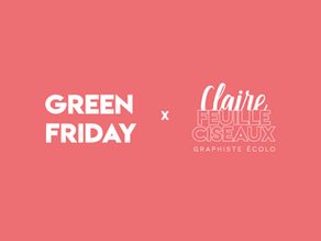 GREEN FRIDAY 2020 🌱 : Mes alternatives écolo !
