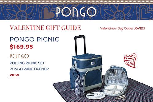 Valentine's Day Pongo Picnic