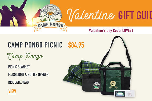 Valentine's Day Camp Pongo Picnic