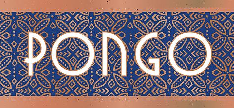 Pongo Full Color Logo Final_png2.png