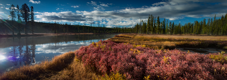 Yellowstone-De Lacy Creek