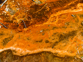 Colours-of-Yellowstone.png
