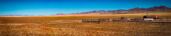 Nevada-Valley-Round-up.