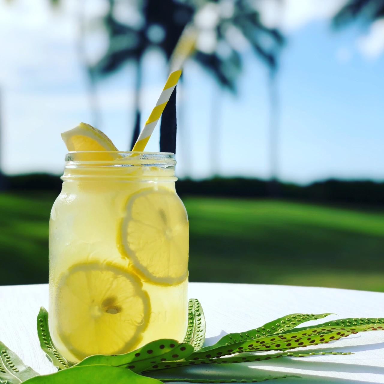 Non Alcoholic Plantation Lemonade