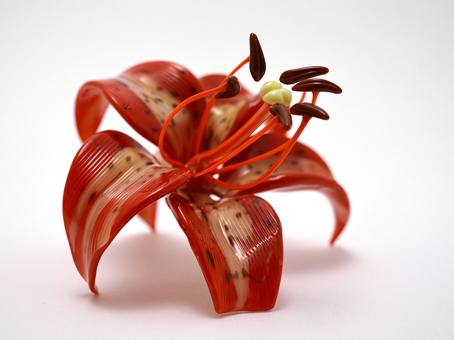 oriental-lily1