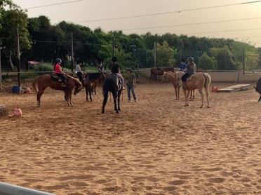 קורס סוסים בחווה של בני שדה ורבורג