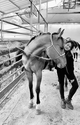 פנסיון לסוסים בשדה ורבורג ליד כפר סבא רעננה