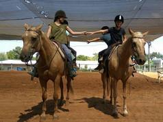 חוות סוסים באזור השרון