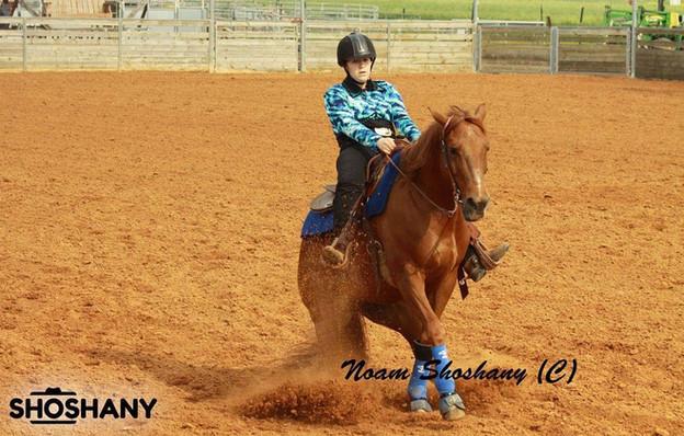 חוות סוסים ליד רעננה החוו של בני