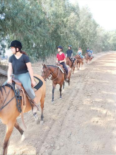 טיולי סוסים לקבוצות ולילדים החווה של בני