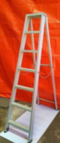 6ft Step ladder .jpg