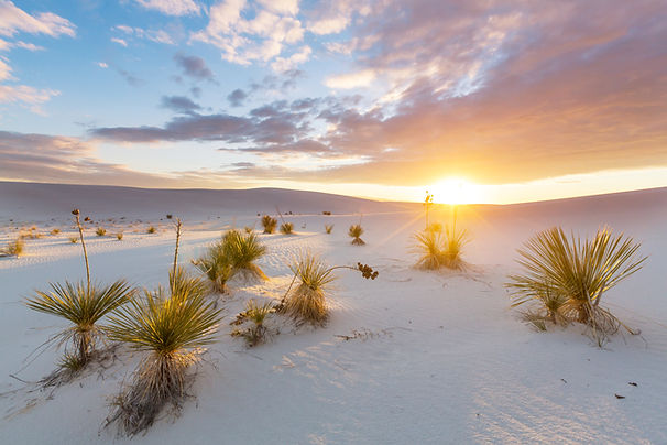 Unusual White Sand Dunes at White Sands