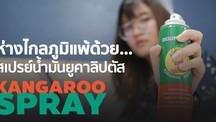 [REVIEW] ให้จมูกโล่งสบาย...ห่างไกลภูมิแพ้ ด้วยสเปรย์น้ำมันยูคาลิปตัส ตราจิงโจ้ (Kangaroo Spray)
