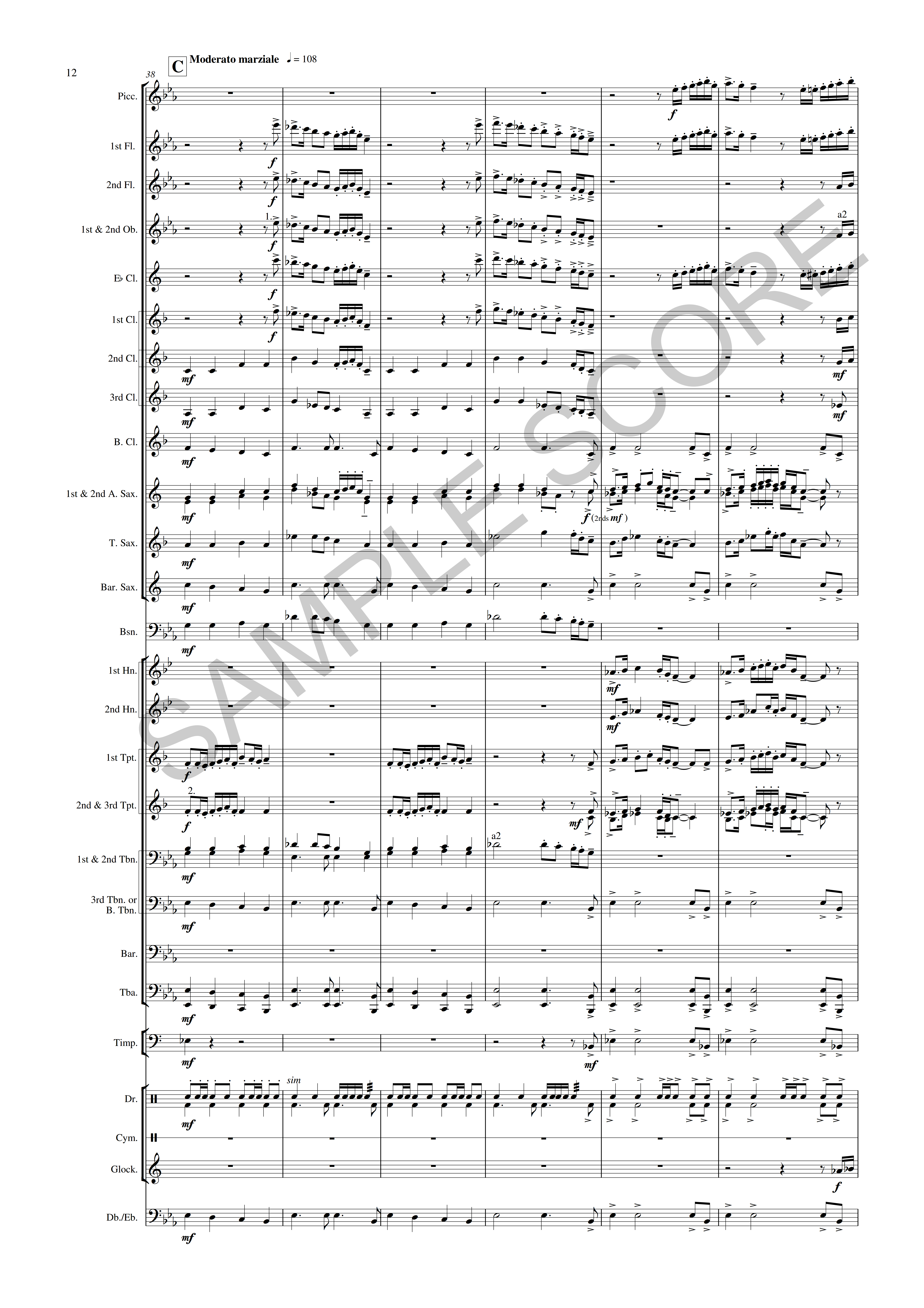 Halezfax-Example Conductor's Page 12