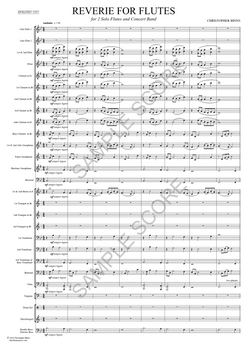 Reverie For Flutes -  Ex Sct Page 5