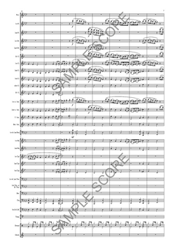 Example Conductor's Page 7