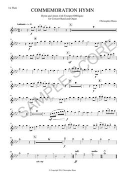 Example 1st Flute Score