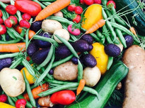 Seasonal vegetable gardens for your enjoyment